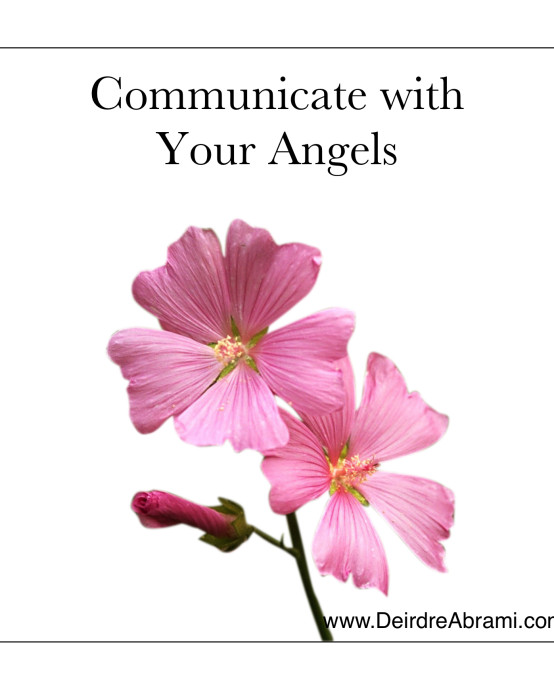 COMMUNICATE WITH YOUR ANGELS WORKSHOP @ Crystal Vision, Hollywood, FL